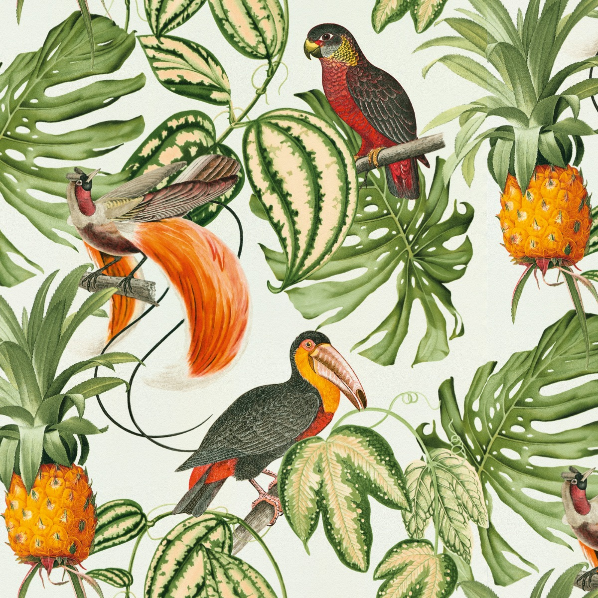 Erismann Paradisio Tropical Birds Wallpaper White (6302-07-BUR)