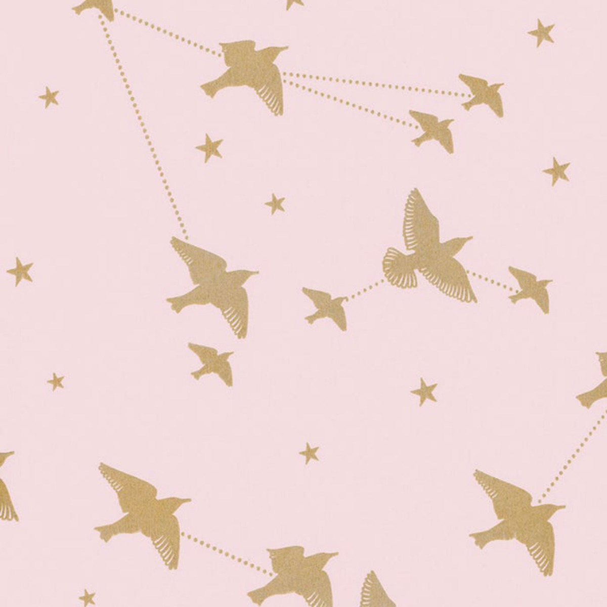starling star bird wallpaper gold pink