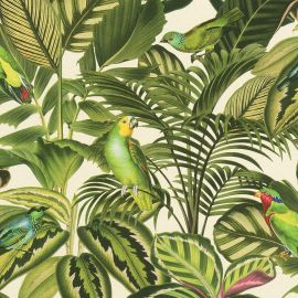 Freundin Tropical Parrot Wallpaper Green / Cream Rasch 439533