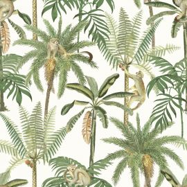 Amazonia Monkey Trees Jungle Wallpaper White World of Wallpaper WOW043