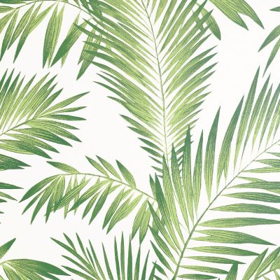 Artistick Tropical Palm Self Adhesive Wallpaper Green Arthouse 300202 6m x 0.53m