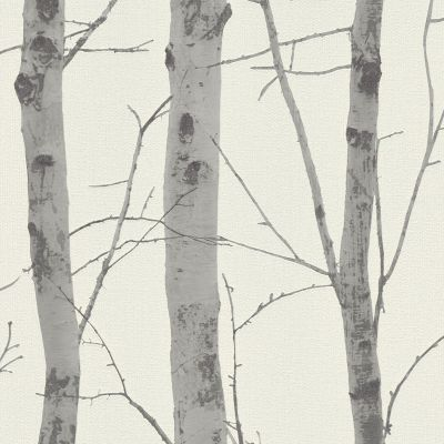 Birch Trees Wallpaper Cream / Grey Erismann 5433-47