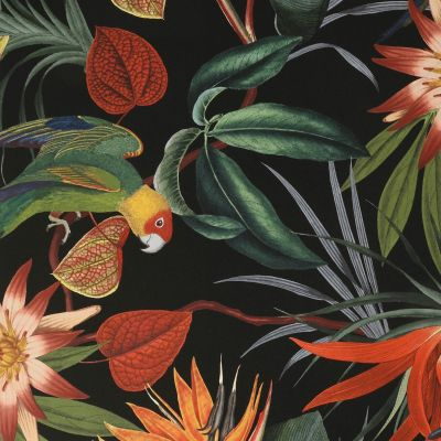 Superfresco Easy Parrot Wallpaper Black Graham & Brown 108602