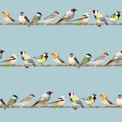 Fresca Tweeting Sky Birds Wallpaper Blue Graham & Brown 106628