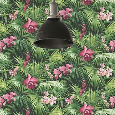 Global Fusion Tropical Florals Wallpaper Pink G56435