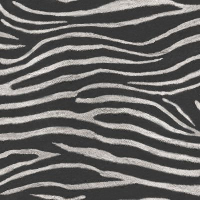 Tropics Serengeti Zebra Print Wallpaper - Black - Arthouse 670300