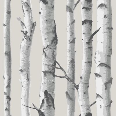 NuWallpaper Birch Tree Peel And Stick Wallpaper - Grey NU1650
