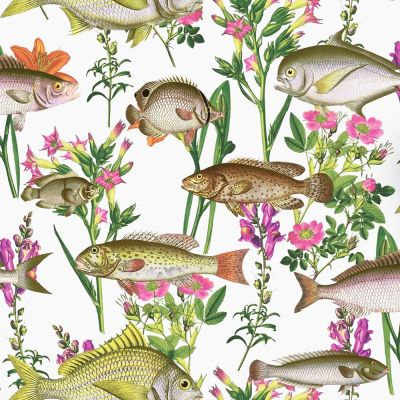 Holden Lagoon Fish Wallpaper - White 12170 | Feature