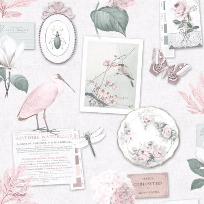 Holden Vintage Curiosity Collage Wallpaper - Dusky Pink 12371 | Feature