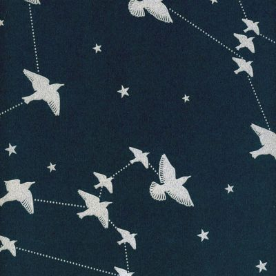 Star-ling Wallpaper Midnight and Silver Mini Moderns AZDPT029MI