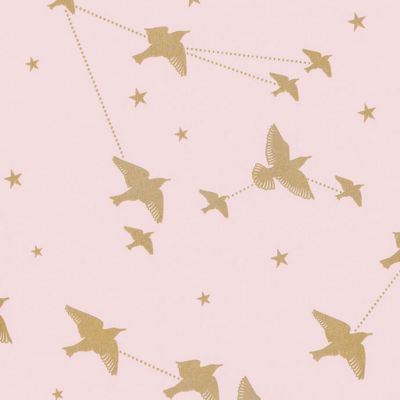Star-ling Wallpaper Rose Marais and Gold Mini Moderns AZDPT029RM