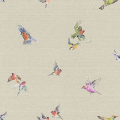 Lazy Sunday Bird Print Wallpaper Grey Rasch 401158
