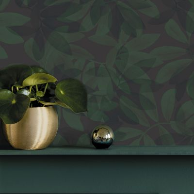 Ted's Enchanted Collection Houdini Wallpaper-Dark Green, Ted Baker 12481