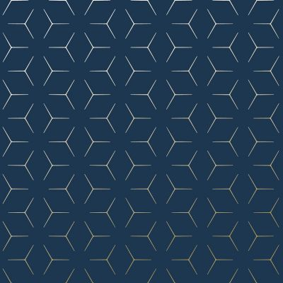 Metro Illusion Geometric Wallpaper - Navy Blue and Gold - WOW005