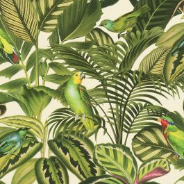 Freundin Tropical Parrot Wallpaper Green Cream Rasch 439533