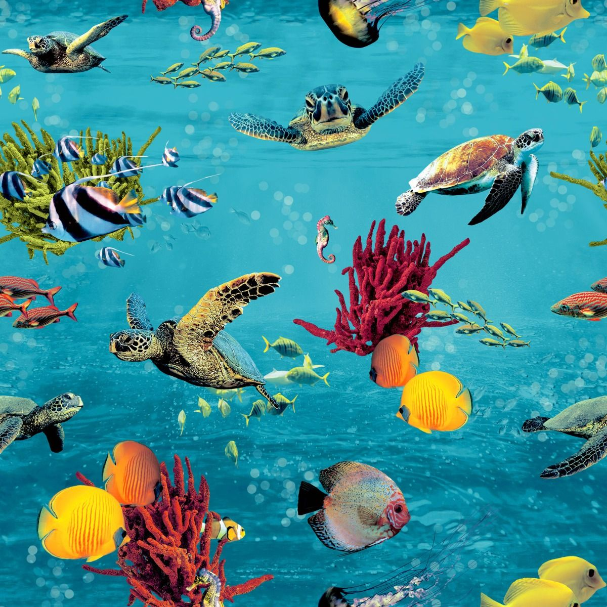 aquarium fish wallpaper bathroom