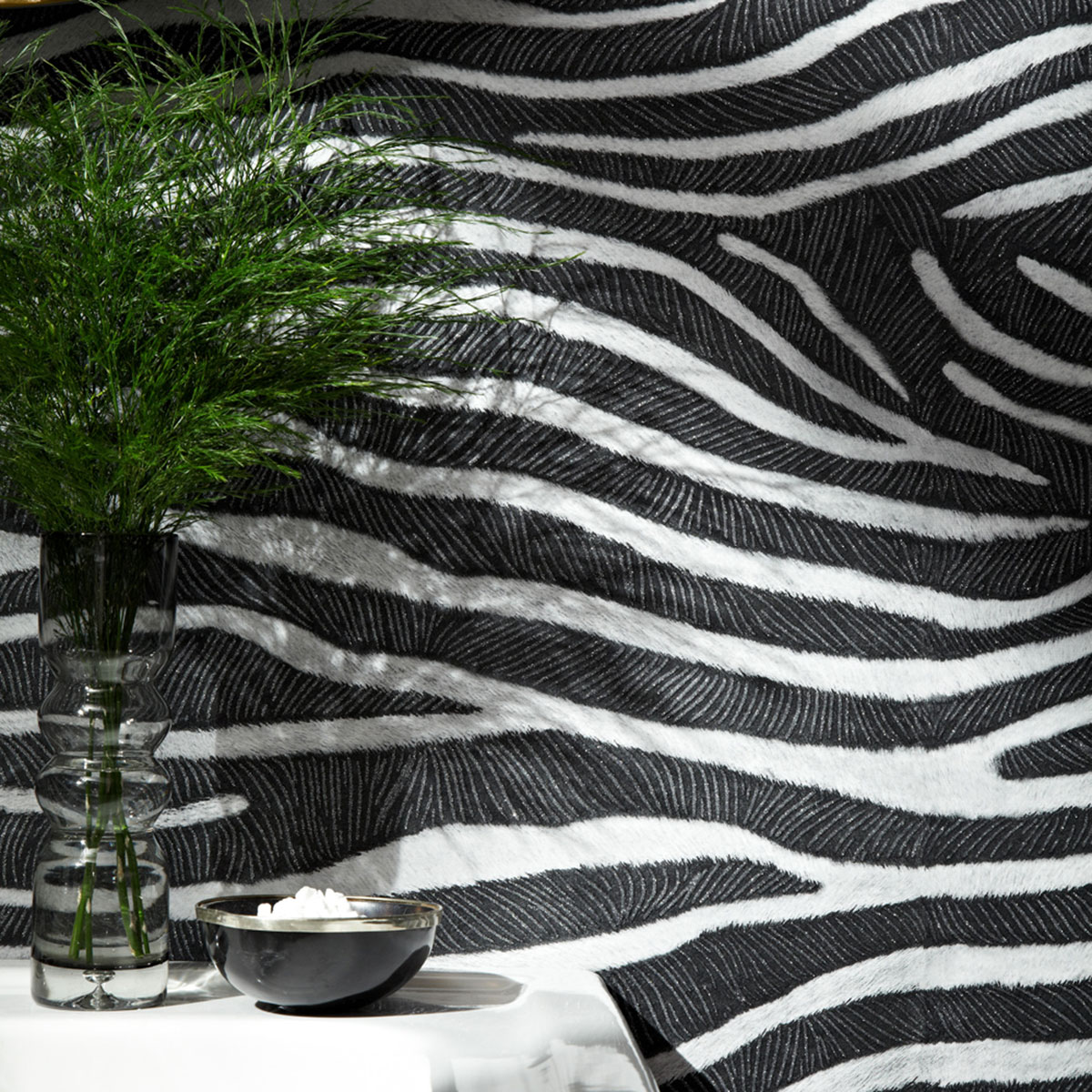 Tropics Serengeti Zebra Print Wallpaper Black Arthouse 670300