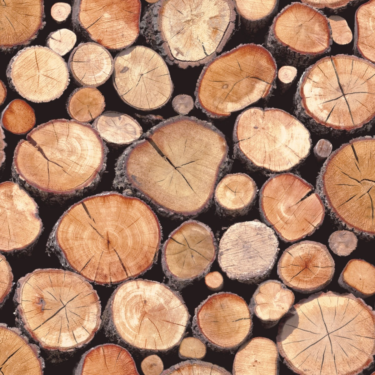 Stacked Logs Wallpaper Natural Holden 97710