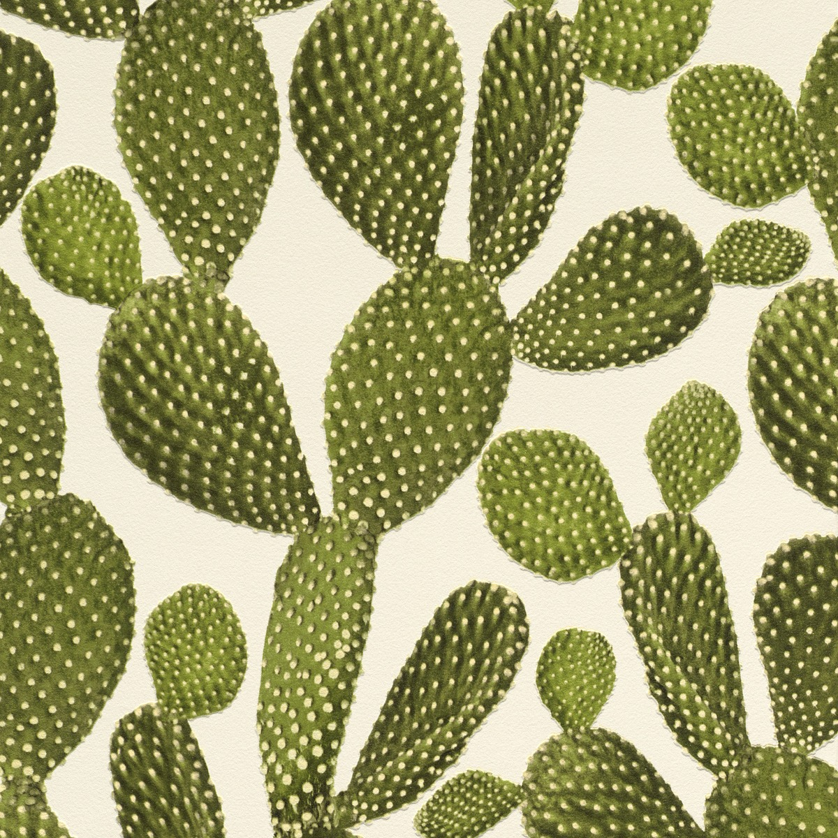 Cactus Wallpaper - Green and Cream - Rasch 441000