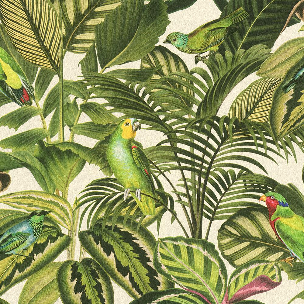 Freundin Tropical Parrot Wallpaper Green / Cream Rasch 439533