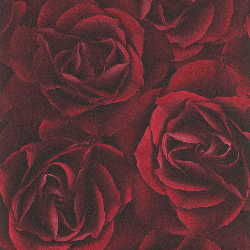 Floral Rose Wallpaper Deep Red Rasch 525625