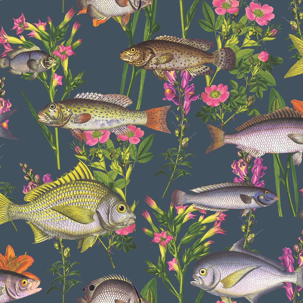 Lagoon Fish Wallpaper Midnight Blue World of Wallpaper 50150