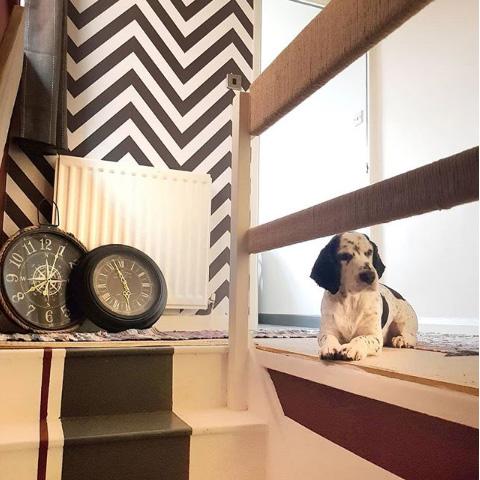 Zig Zag Monochrome Wallpaper Hallway and Staircase Instagram @ewan2605
